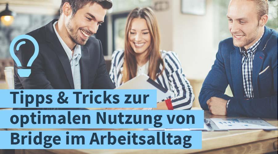 Teaserbild_Webinar_optimaler-einsatz-bridge-im-arbeitsalltag